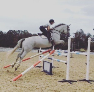 This week during a jump lesson. Working' on some V-Rails. And where I'm supposed to push my tail over the fence. true life.