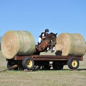 frye wagon