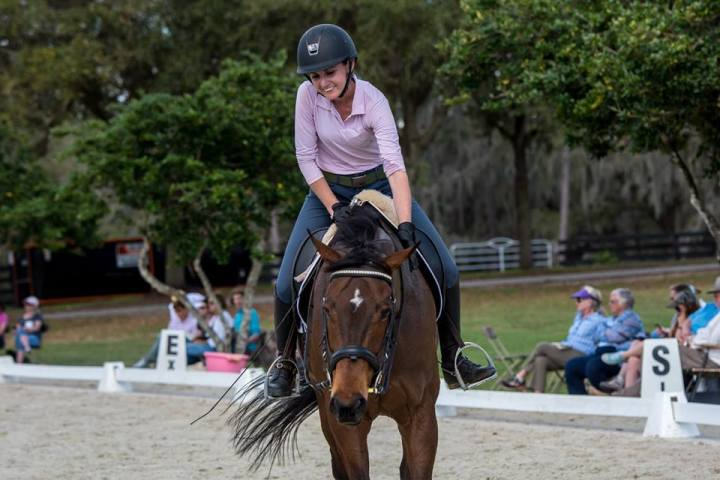 Horse Welfare and Rider Responsibility